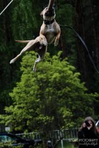 HJ - High Jump. Kanas